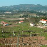 The Douro is a very fertile region where the slopes are often cultivated for vineyards & smallholdings